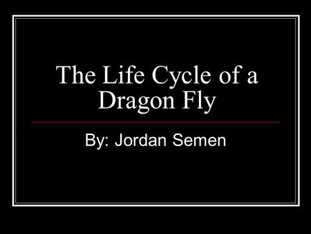 The Life Cycle of a Dragon Fly By: Jordan Semen. Dragon Fly Eggs The eggs are laid in or near water. For some species that laid their eggs near water.
