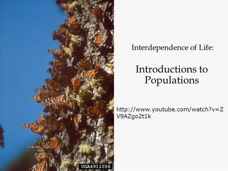Interdependence of Life: Introductions to Populations  V9AZgo2t1k.