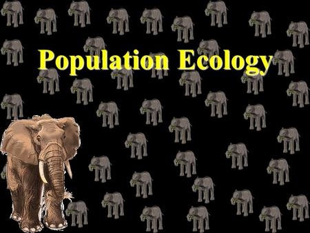 Population Ecology Chapter Overview Questions What are the major characteristics of populations? How do populations respond to changes in environmental.