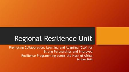 Regional Resilience Unit Promoting Collaboration, Learning and Adapting (CLA) for Strong Partnerships and improved Resilience Programming across the Horn.