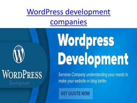 WordPress development companies. Wordpress custom theme design.