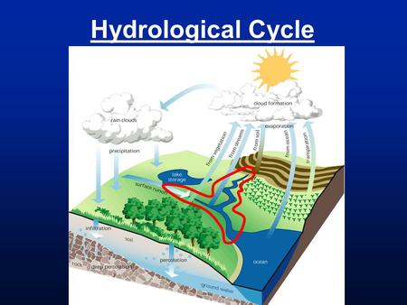 Hydrological Cycle.