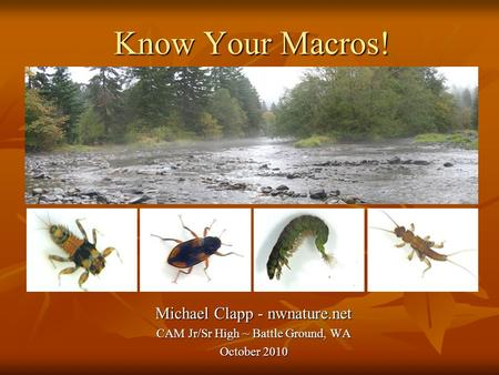 Know Your Macros! Michael Clapp - nwnature.net