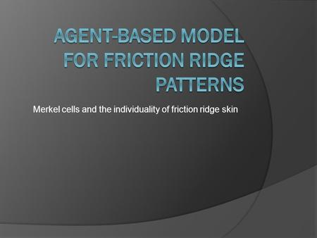 Merkel cells and the individuality of friction ridge skin.