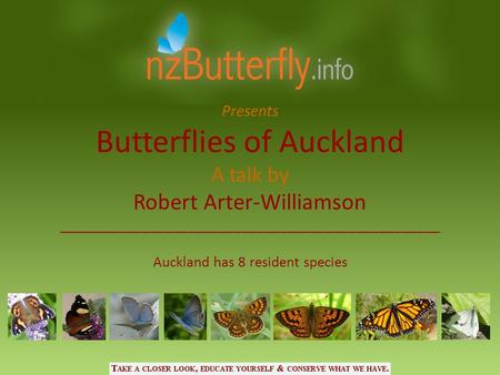 Butterflies of Auckland