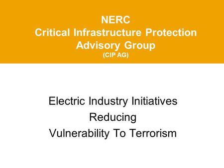 NERC Critical Infrastructure Protection Advisory Group (CIP AG) Electric Industry Initiatives Reducing Vulnerability To Terrorism.
