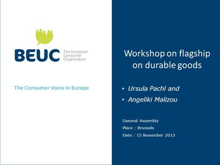 Workshop on flagship on durable goods