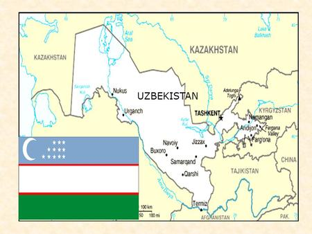 UZBEKISTAN Structure of association UZELTECHPROM on patterns of ownership.