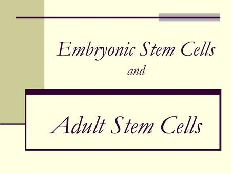 Embryonic Stem Cells and Adult Stem Cells. Exciting News!!! Stem Cells Stem cells are curing and healing people today! But…
