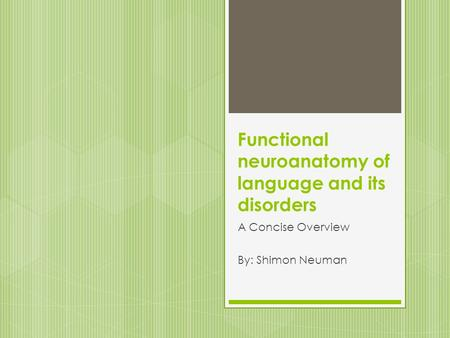Functional neuroanatomy of language and its disorders A Concise Overview By: Shimon Neuman.