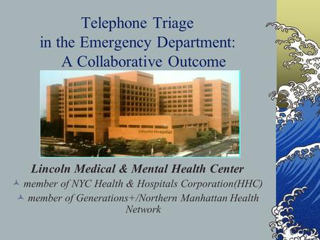 Telephone Triage in the Emergency Department: A Collaborative Outcome Lincoln Medical & Mental Health Center member of NYC Health & Hospitals Corporation(HHC)