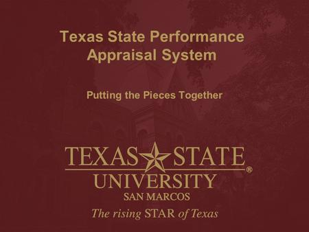 Texas State Performance Appraisal System Putting the Pieces Together.