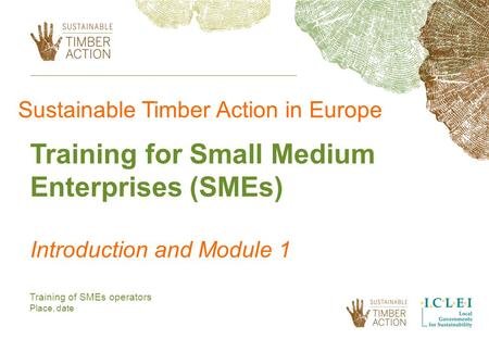 Training of SMEs operators Place, date Sustainable Timber Action in Europe Training for Small Medium Enterprises (SMEs) Introduction and Module 1.