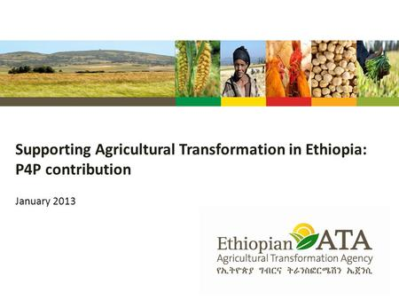 Supporting Agricultural Transformation in Ethiopia: P4P contribution January 2013.