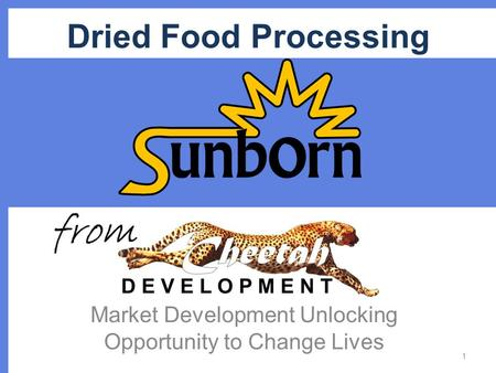 Dried Food Processing Market Development Unlocking Opportunity to Change Lives 1 from.