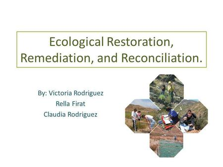 Ecological Restoration, Remediation, and Reconciliation. By: Victoria Rodriguez Rella Firat Claudia Rodriguez.