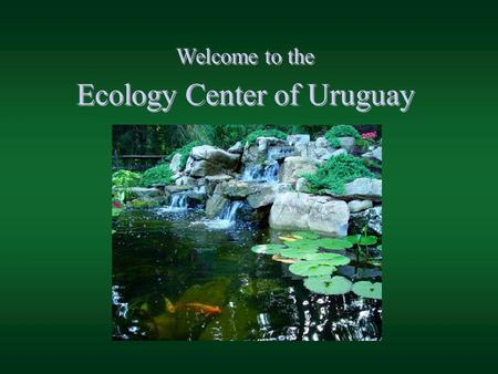 Welcome to the Ecology Center of Uruguay. A nexus for biodiversity research, eco-solutions, and positive inspiration for our shared future. A nexus for.