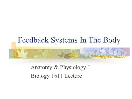 Feedback Systems In The Body Anatomy & Physiology I Biology 1611 Lecture.