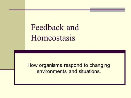Feedback and Homeostasis How organisms respond to changing environments and situations.