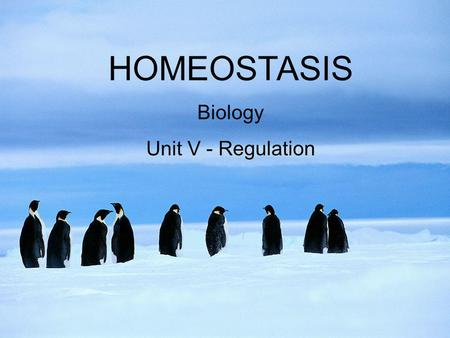 HOMEOSTASIS Biology Unit V - Regulation.