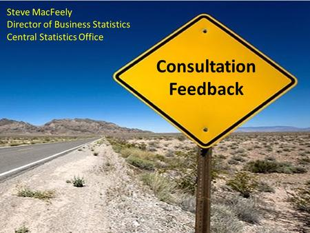 Consultation Feedback Steve MacFeely Director of Business Statistics Central Statistics Office.