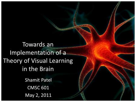 Towards an Implementation of a Theory of Visual Learning in the Brain Shamit Patel CMSC 601 May 2, 2011.