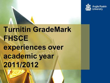 Turnitin GradeMark FHSCE experiences over academic year 2011/2012.