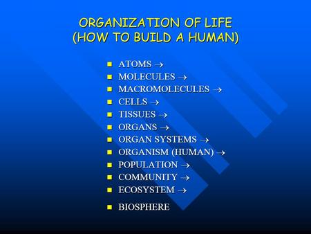 ORGANIZATION OF LIFE (HOW TO BUILD A HUMAN) ATOMS ATOMS MOLECULES MOLECULES MACROMOLECULES MACROMOLECULES CELLS CELLS TISSUES TISSUES ORGANS ORGANS ORGAN.