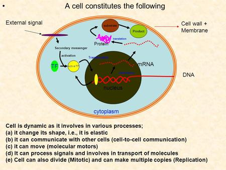 A cell constitutes the following cytoplasm nucleus DNA Cell wall + Membrane Cell is dynamic as it involves in various processes; (a) it change its shape,