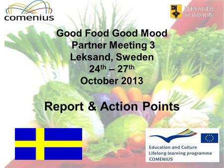 Good Food Good Mood Partner Meeting 3 Leksand, Sweden 24 th – 27 th October 2013 Report & Action Points.