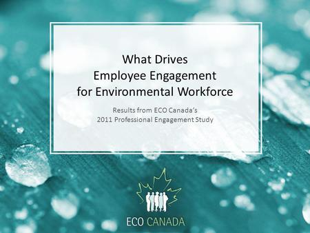 What Drives Employee Engagement for Environmental Workforce Results from ECO Canadas 2011 Professional Engagement Study.