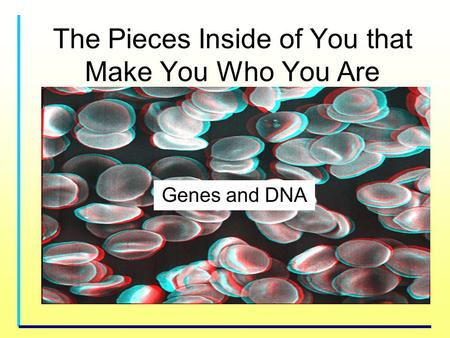 Genes and DNA The Pieces Inside of You that Make You Who You Are.