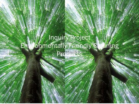 Lisa Mueller Inquiry Project Environmentally Friendly Cleaning Products.