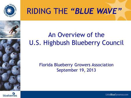 An Overview of the U.S. Highbush Blueberry Council Florida Blueberry Growers Association September 19, 2013 RIDING THE BLUE WAVE.