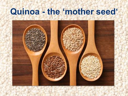 Quinoa - the mother seed. Quinoa: the facts Quinoa - pronounced keen-wah From a species of Chenopodium or goosefoot plants Dates back over 5,000 years.