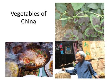 Vegetables of China. Prepared for students in Ethnobotany in China, a Study Abroad course at Eastern Illinois University taught by Gordon C. Tucker and.