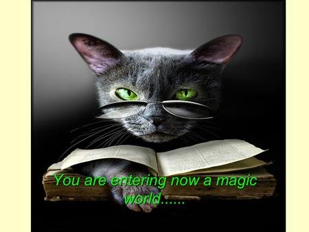 You are entering now a magic world....... in one single moment....