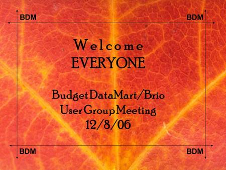 BDM W e l c o m e EVERYONE Budget DataMart/Brio User Group Meeting 12/8/06.