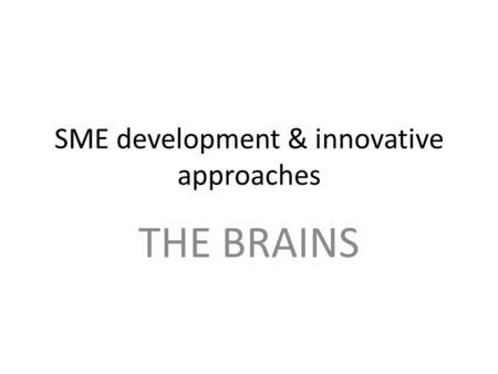 SME development & innovative approaches THE BRAINS.