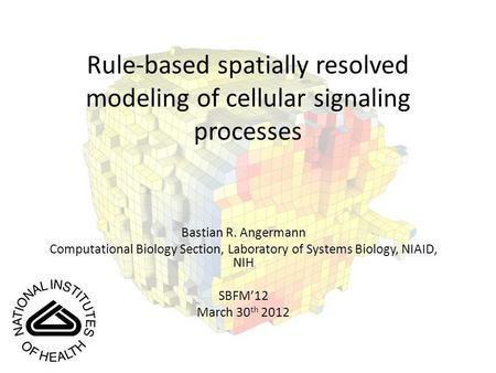Rule-based spatially resolved modeling of cellular signaling processes Bastian R. Angermann Computational Biology Section, Laboratory of Systems Biology,