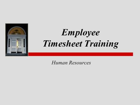 Employee Timesheet Training
