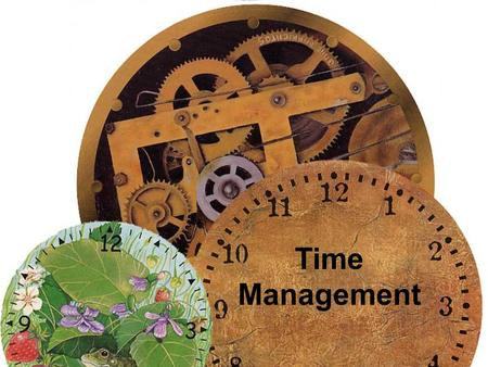 Time Management. Answers a few Questions Question 1: What one thing could you do (that you arent doing now) that if you did on a regular basis, would.