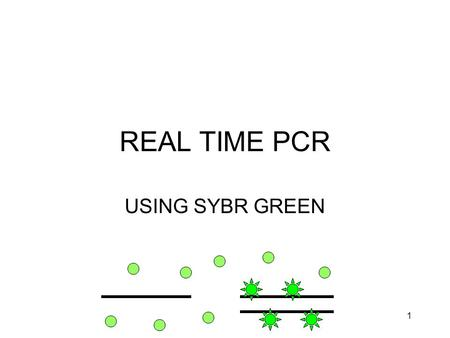 1 REAL TIME PCR USING SYBR GREEN. 2 THE PROBLEM NEED TO QUANTITATE DIFFERENCES IN mRNA EXPRESSION SMALL AMOUNTS OF mRNA –LASER CAPTURE –SMALL AMOUNTS.