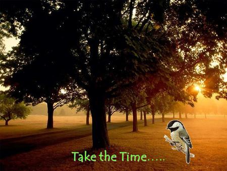 Take the Time…...