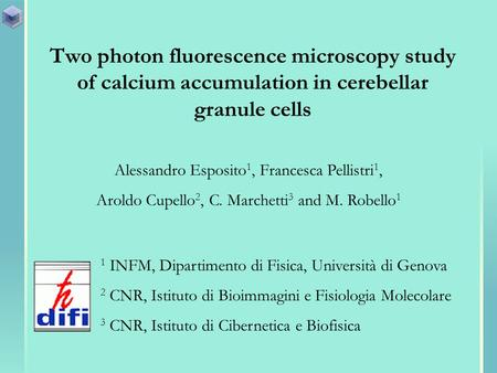 Two photon fluorescence microscopy study of calcium accumulation in cerebellar granule cells Alessandro Esposito 1, Francesca Pellistri 1, Aroldo Cupello.