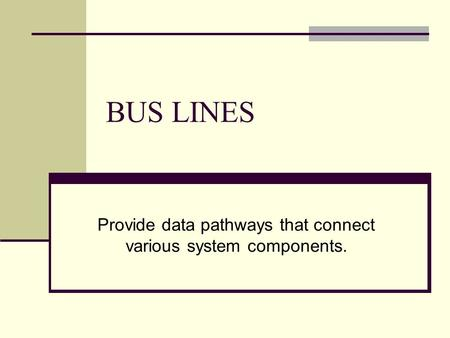 BUS LINES Provide data pathways that connect various system components.