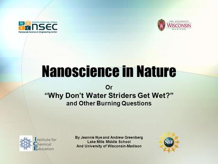 Nanoscience in Nature Or Why Dont Water Striders Get Wet? and Other Burning Questions By Jeannie Nye and Andrew Greenberg Lake Mills Middle School And.