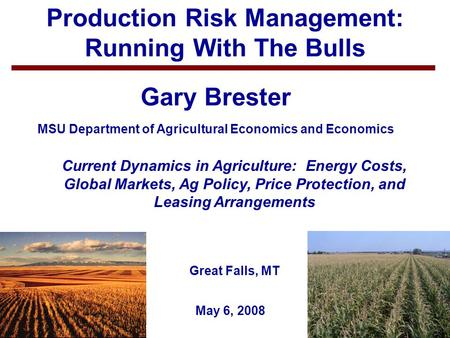 1 Production Risk Management: Running With The Bulls Gary Brester MSU Department of Agricultural Economics and Economics May 6, 2008 Current Dynamics in.