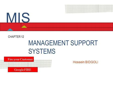 MIS MANAGEMENT SUPPORT SYSTEMS CHAPTER 12 Fire your Customer