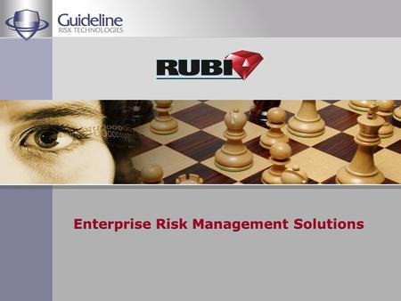 Founded 1993 Primary focus – Enterprise Risk Management Solutions COMPANY PROFILE.